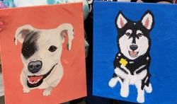 The image for Paint your PET!