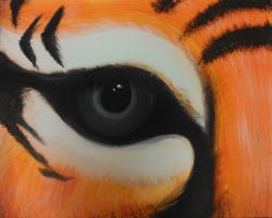 The image for Eye of the tiger